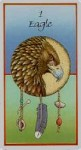 Eagle card from new Medicine Cards deck